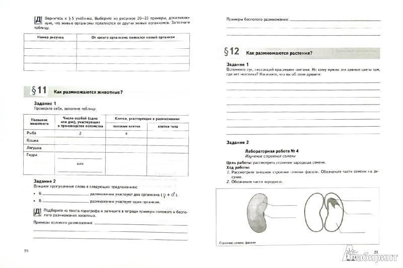 Иллюстрация 1 из 11 для Биология. 5 класс. Рабочая тетрадь. ФГОС - Сухова, Строганов | Лабиринт - книги. Источник: Лабиринт