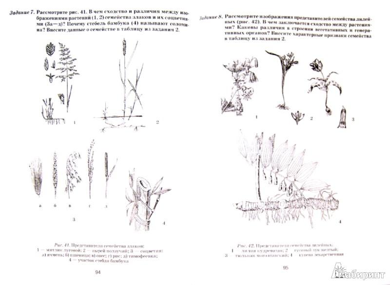 Решебник сборника задач по физике волькенштейна.