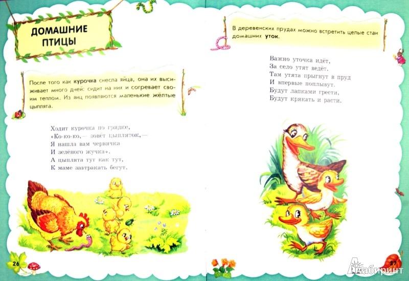 Иллюстрация 1 из 9 для Веселая энциклопедия - Юлия Каспарова | Лабиринт - книги. Источник: Лабиринт