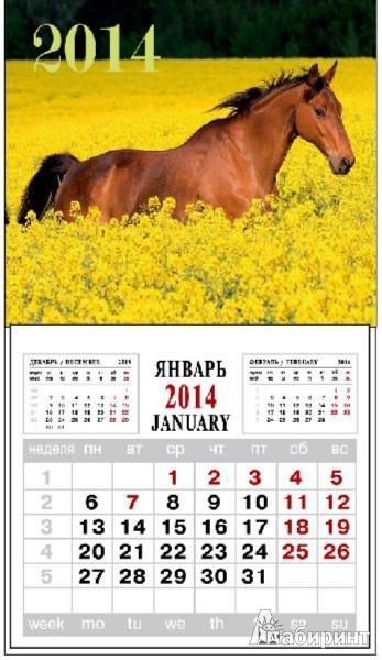 """Иллюстрация 1 из 3 для Календарь на 2014 год с магнитным креплением """"Лошадь в цветах"""" (32009)   Лабиринт - сувениры. Источник: Лабиринт"""