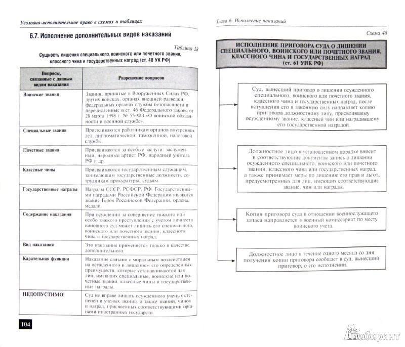 Иллюстрация 1 из 14 для Уголовно-исполнительное право в схемах и таблицах - Игорь Пикалов | Лабиринт - книги. Источник: Лабиринт