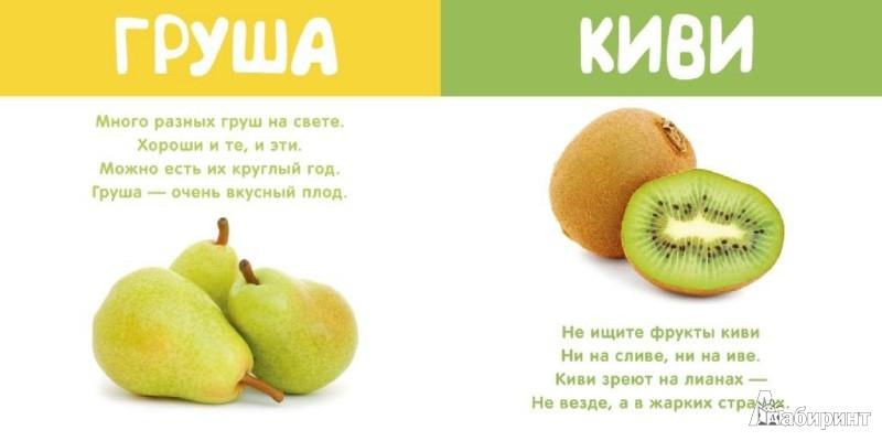 Иллюстрация 1 из 11 для Мои фрукты и ягоды - Леонид Фадеев | Лабиринт - книги. Источник: Лабиринт