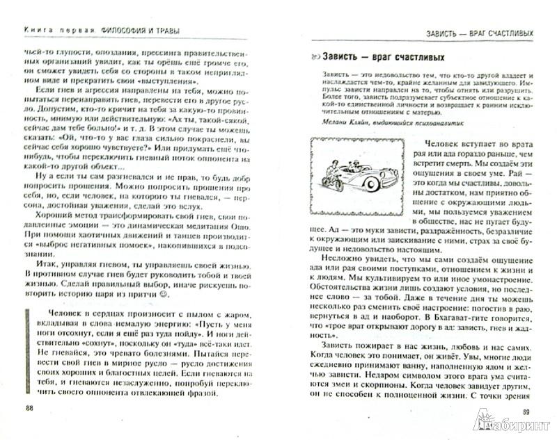 Иллюстрация 1 из 12 для Аюрведа. Философия и травы - Ян Раздобурдин   Лабиринт - книги. Источник: Лабиринт