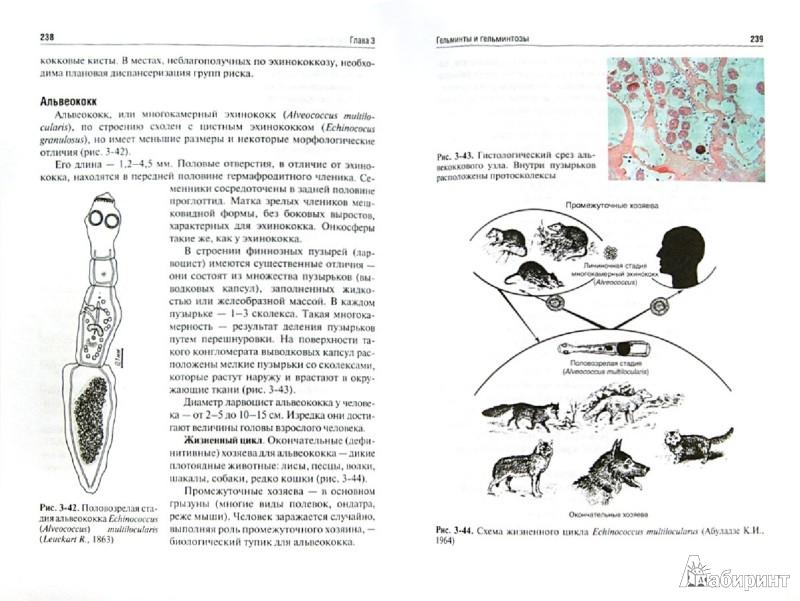 Иллюстрация 1 из 28 для Медицинская паразитология и паразитарные болезни. Протозоозы и гельминтозы. Учебное пособие - Ходжаян, Козлов, Голубева | Лабиринт - книги. Источник: Лабиринт