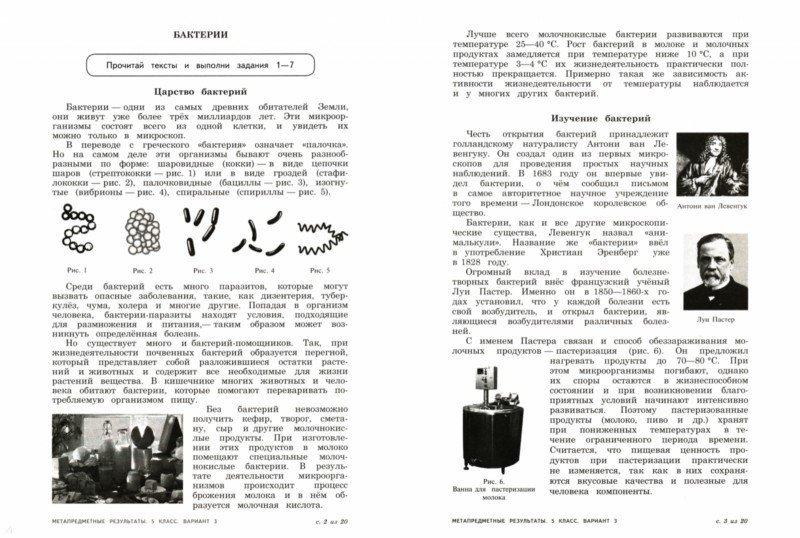 тексты комплексной контрольной работы 5 класс