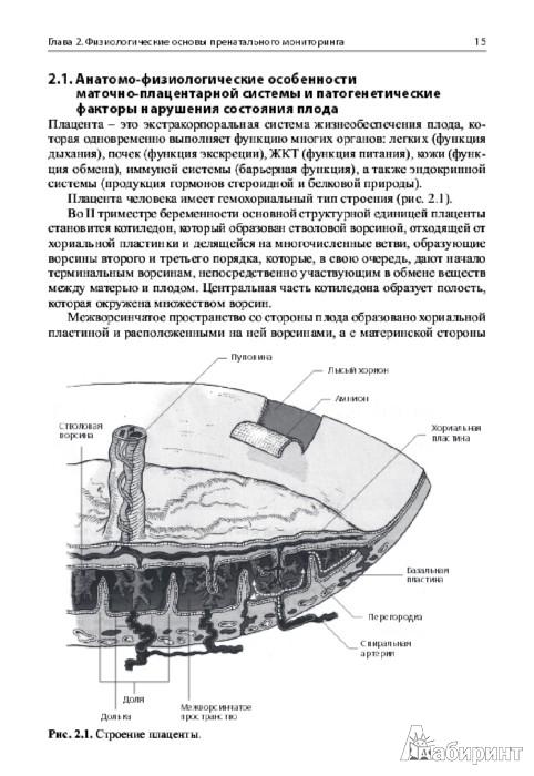 Иллюстрация 1 из 2 для Кардиотокография при беременности и в родах. Учебное пособие - Макаров, Юдина | Лабиринт - книги. Источник: Лабиринт