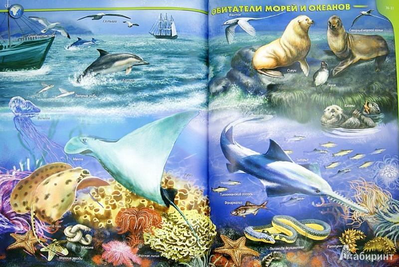 Иллюстрация 1 из 12 для Атлас жителей морей и океанов - Татьяна Жабская | Лабиринт - книги. Источник: Лабиринт