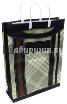 Сумка подарочная с пластиковыми ручками (PBL-311)Подарочные пакеты<br>Сумка подарочная с пластиковыми ручками.<br>Размер: 320х420х100 мм.<br>Материал: полипропилен<br>Сделано в Китае.<br>