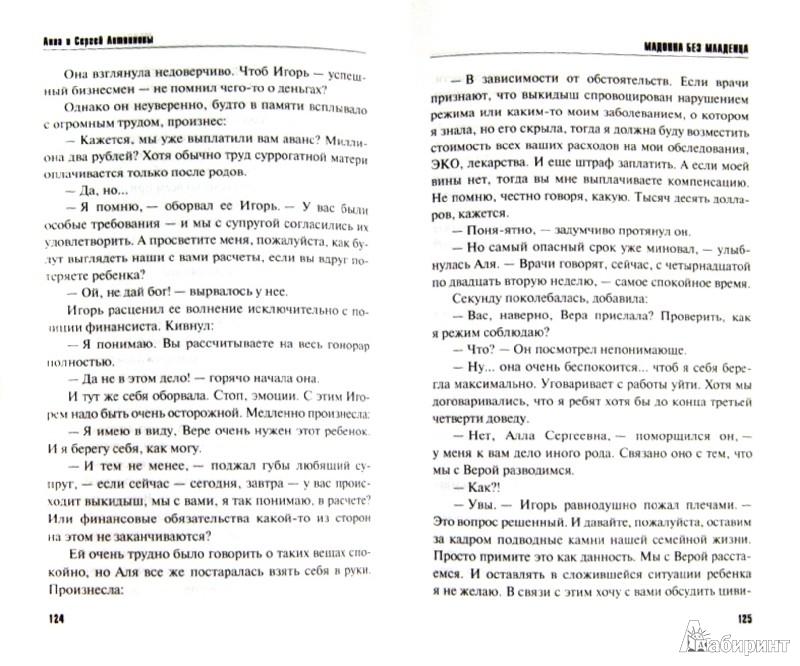Иллюстрация 1 из 3 для Мадонна без младенца - Литвинова, Литвинов | Лабиринт - книги. Источник: Лабиринт