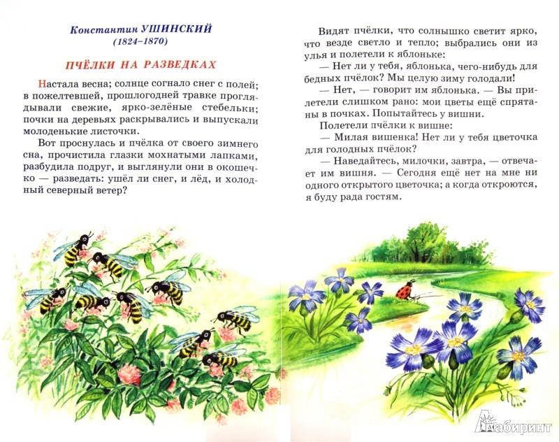 Иллюстрация 1 из 4 для Внеклассное чтение. 1 класс | Лабиринт - книги. Источник: Лабиринт