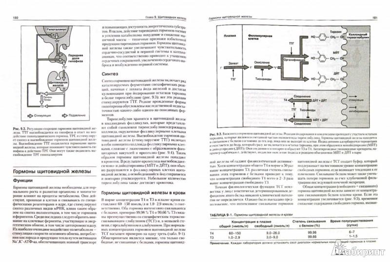 Иллюстрация 1 из 26 для Клиническая биохимия - Маршалл, Бангерт | Лабиринт - книги. Источник: Лабиринт