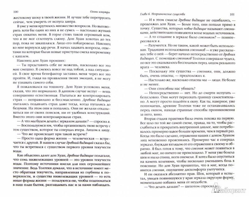 Иллюстрация 1 из 26 для Огонь изнутри - Карлос Кастанеда | Лабиринт - книги. Источник: Лабиринт