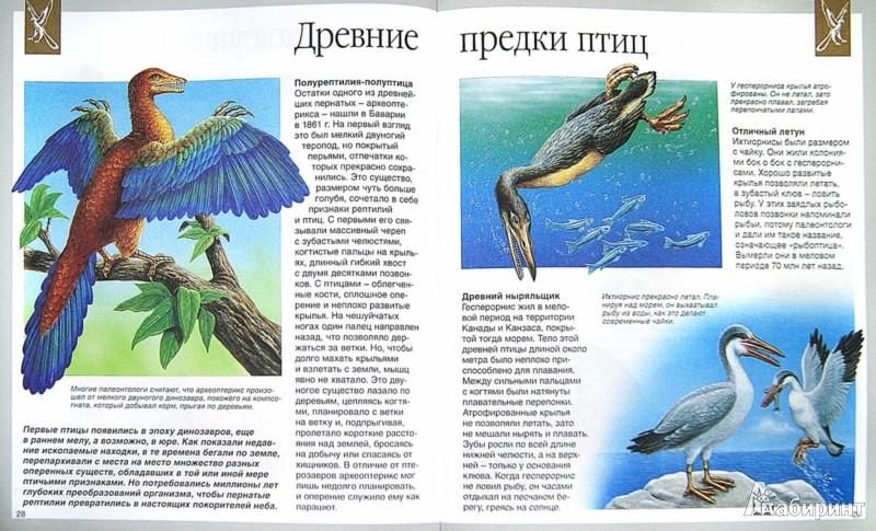 Иллюстрация 1 из 35 для Динозавры - Лора Камбурнак | Лабиринт - книги. Источник: Лабиринт