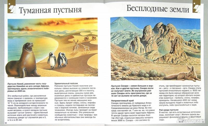 Иллюстрация 1 из 42 для Секреты природы - Кристин Лазье   Лабиринт - книги. Источник: Лабиринт