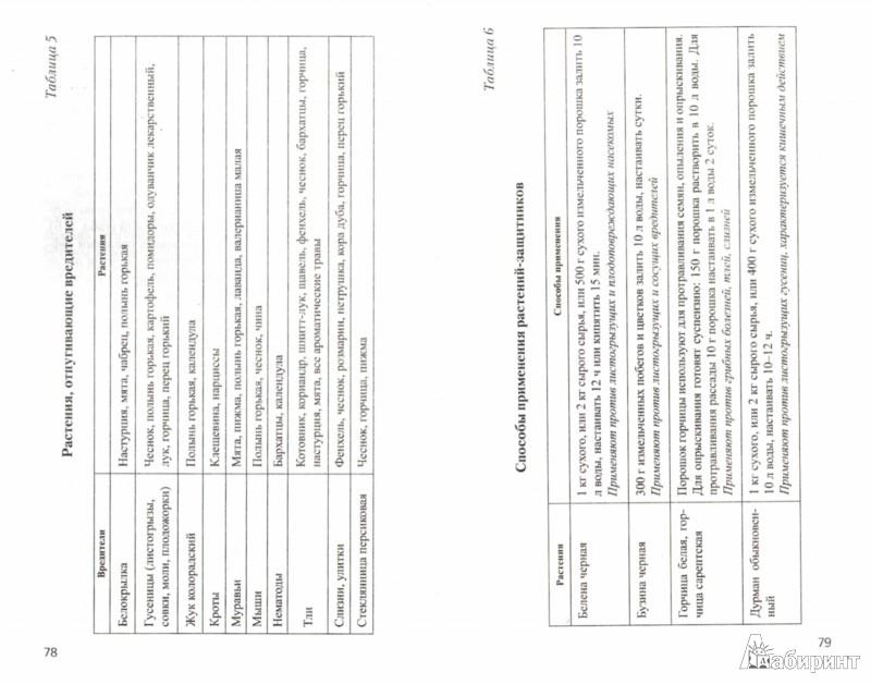 Иллюстрация 1 из 8 для Новейшие технологии природного земледелия. Практическое руководство для фермеров и дачников - Татьяна Герасько | Лабиринт - книги. Источник: Лабиринт