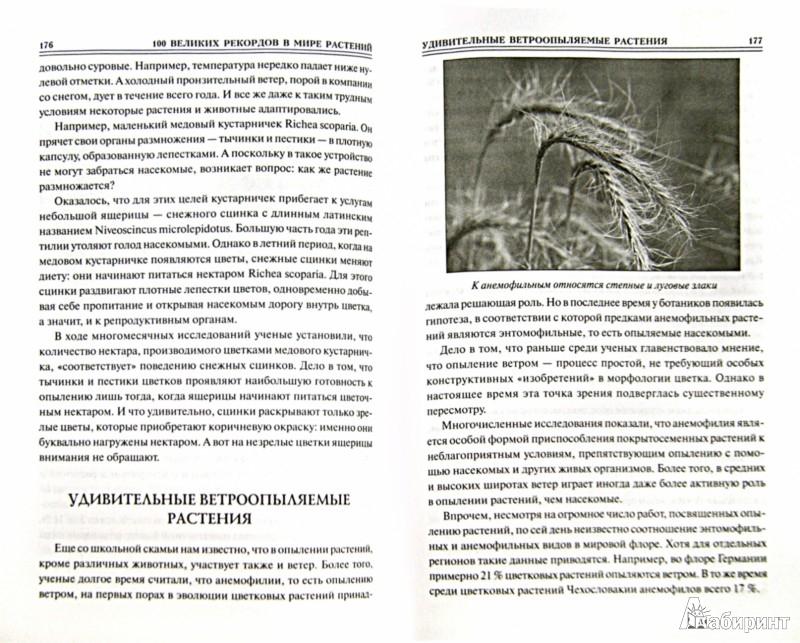 Иллюстрация 1 из 38 для Сто великих рекордов в мире растений - Анатолий Бернацкий | Лабиринт - книги. Источник: Лабиринт