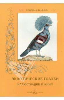 Экзотические голубиЗоология<br>Перед читателем уникальная книга, одна из легендарных в истории французской книжной иллюстрации. Автор рисунков - художница Полина Книп, всю свою жизнь посвятившая изображению птиц. Она рисовала разнообразных пернатых, но особенное внимание уделяла голубям.<br>