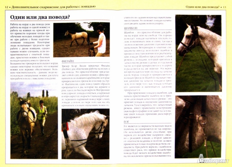 Иллюстрация 1 из 3 для Дополнительное снаряжение для работы с лошадью - Каролин Хендерсон | Лабиринт - книги. Источник: Лабиринт
