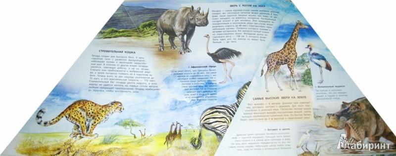 Иллюстрация 1 из 2 для Животные (треугольник) | Лабиринт - книги. Источник: Лабиринт