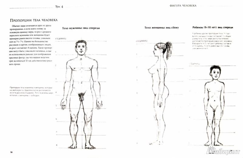 Иллюстрация 1 из 14 для Рисование для начинающих. Пошаговые уроки - Баррингтон Барбер   Лабиринт - книги. Источник: Лабиринт