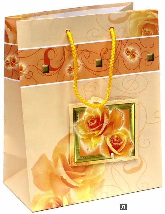 Иллюстрация 1 из 3 для Пакет подарочный ламинированный, 180х227х100, ассортимент (M-3D-026) | Лабиринт - сувениры. Источник: Лабиринт