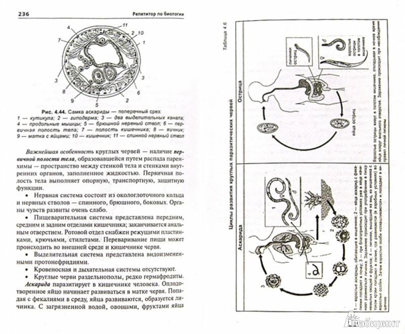 Иллюстрация 1 из 6 для Репетитор по биологии. Готовимся к ЕГЭ и ГИА. Для поступающих в медицинские учебные заведения - Татьяна Шустанова | Лабиринт - книги. Источник: Лабиринт