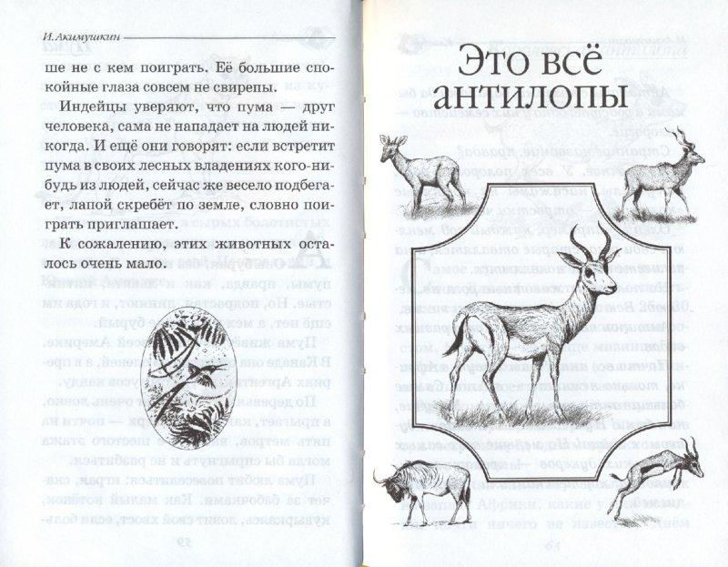 Иллюстрация 1 из 24 для В мире животных - Игорь Акимушкин | Лабиринт - книги. Источник: Лабиринт