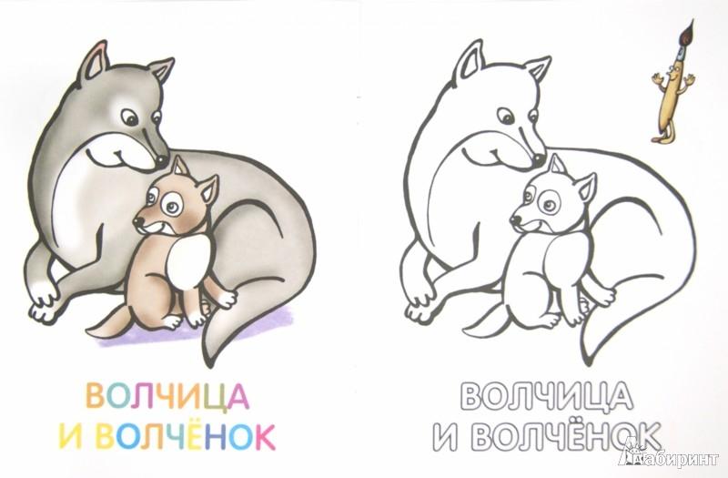 Иллюстрация 1 из 5 для Раксраска для малышей. Родители и детки. Курочка   Лабиринт - книги. Источник: Лабиринт