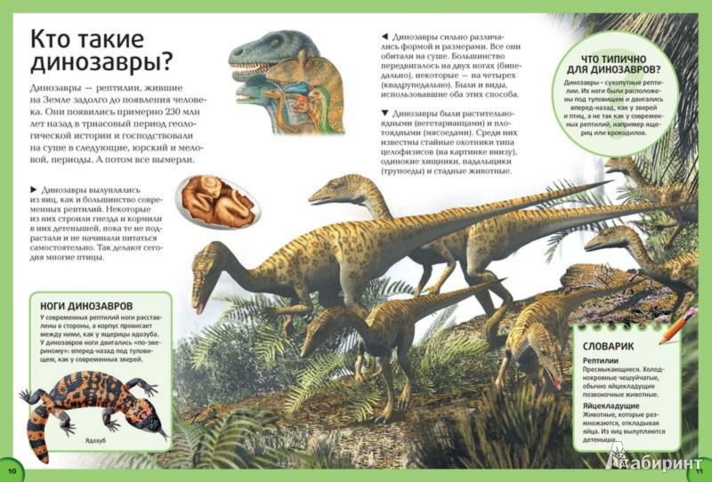 Иллюстрации к динозавры