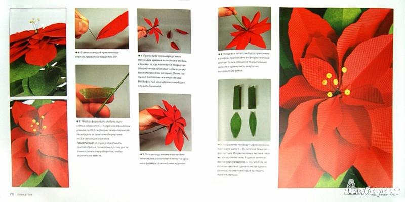 Иллюстрация 1 из 25 для Цветы и букеты из бумаги - Джеффри Руделл | Лабиринт - книги. Источник: Лабиринт
