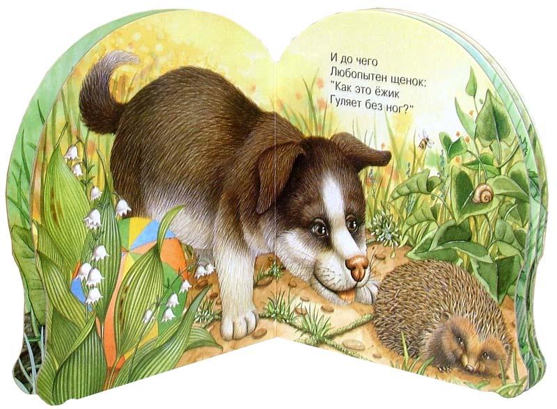 Иллюстрация 1 из 19 для Про ежика. Зверята - В. Комаров | Лабиринт - книги. Источник: Лабиринт