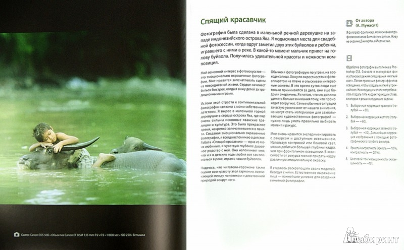 Иллюстрация 1 из 9 для Фотография. Создание великолепных снимков | Лабиринт - книги. Источник: Лабиринт