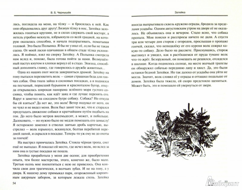 Иллюстрация 1 из 21 для Рядом, Пыж! Рассказы о собаках - Вадим Чернышев | Лабиринт - книги. Источник: Лабиринт