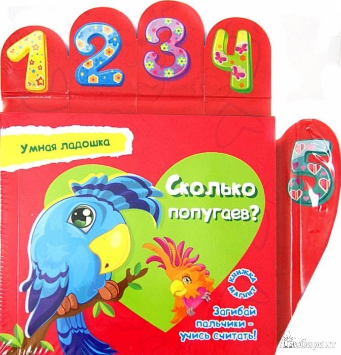 Иллюстрация 1 из 6 для Сколько попугаев? - Юлия Юга | Лабиринт - книги. Источник: Лабиринт
