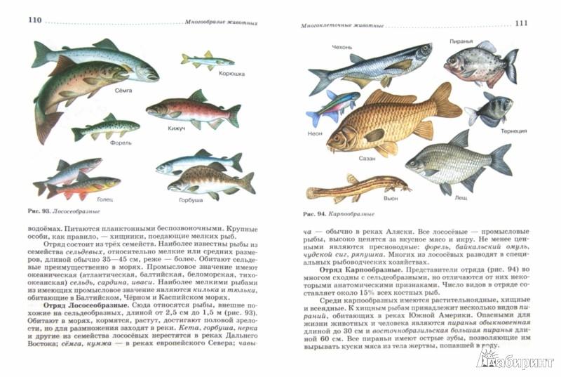 Для книги биология животные 7 класс