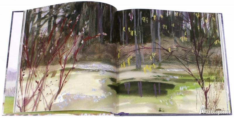 Иллюстрация 1 из 122 для Сказки - Константин Паустовский | Лабиринт - книги. Источник: Лабиринт