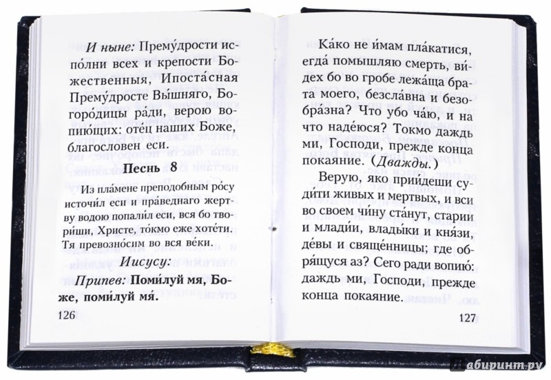 Иллюстрация 1 из 13 для Православный молитвослов карманный | Лабиринт - книги. Источник: Лабиринт
