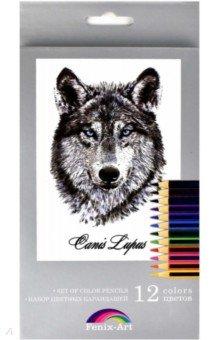 Набор цветных карандашей, 12 цветов Волк (32870-12)Цветные карандаши 12 цветов (9—14)<br>Набор цветных карандашей.<br>Количество цветов: 12<br>Корпус из дерева.<br>Диаметр грифеля: 3 мм.<br>Трехгранная форма.<br>Упаковка: картонная коробка с подвесом с выдвижным блоком.<br>Сделано в Китае.<br>