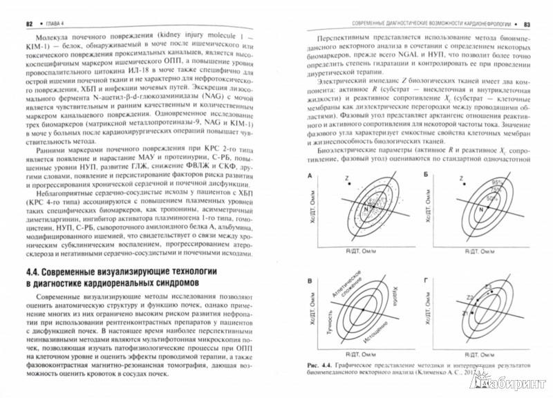 Иллюстрация 1 из 10 для Основы кардиоренальной медицины - Кобалава, Виллевальде, Ефремцева | Лабиринт - книги. Источник: Лабиринт