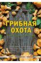 Колядов Алексей Иванович Грибная охота. Советы опытного грибника