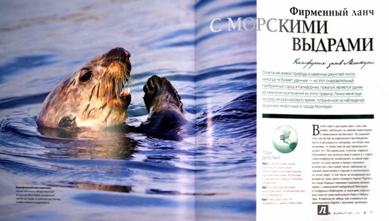 Иллюстрация 1 из 19 для Большая книга путешествий по дикой природе - Марк Карвардайн   Лабиринт - книги. Источник: Лабиринт