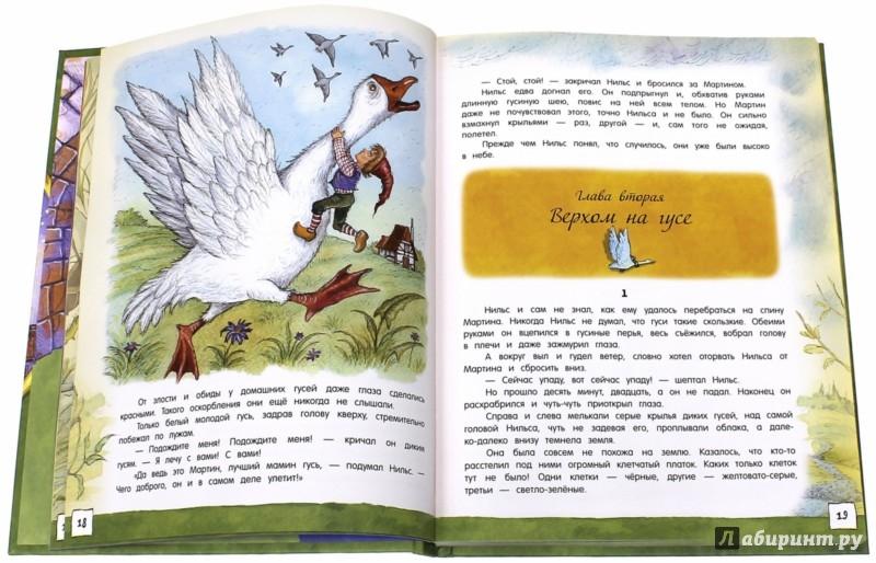 Иллюстрация 1 из 37 для Открой книгу! Чудесное путешествие Нильса с дикими гусями - Лагерлеф Сельма Оттилия Лувиса   Лабиринт - книги. Источник: Лабиринт
