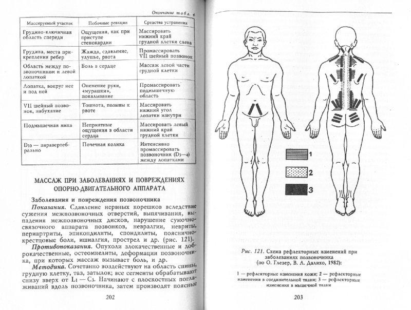 Иллюстрация 1 из 32 для Все о массаже - Владимир Васичкин | Лабиринт - книги. Источник: Лабиринт