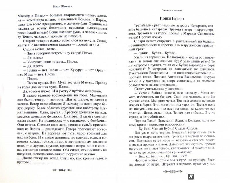 Иллюстрация 1 из 11 для Солнце мертвых - Иван Шмелев   Лабиринт - книги. Источник: Лабиринт