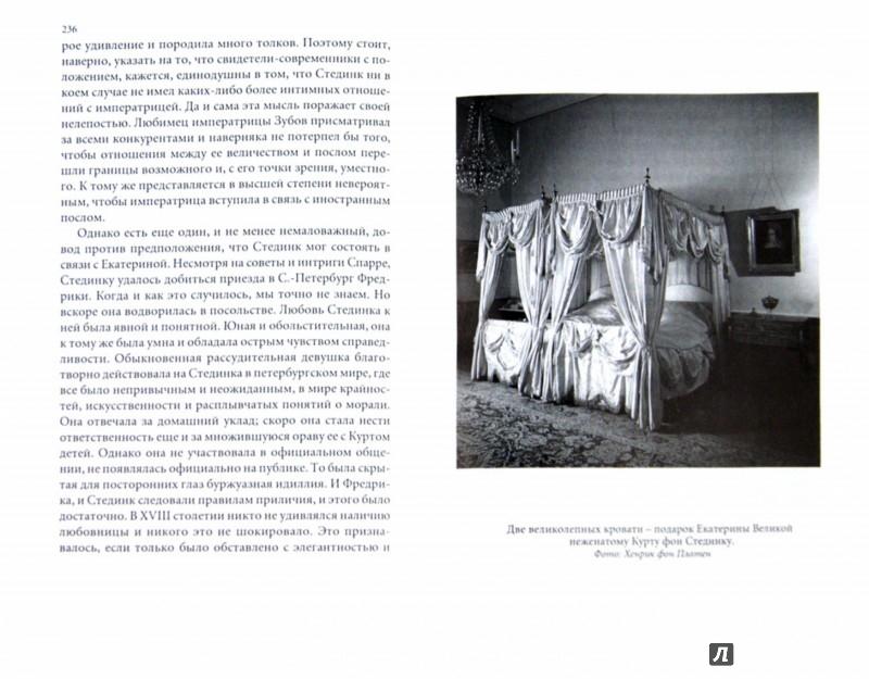 Иллюстрация 1 из 2 для Стединк. Космополит, воин и дипломат при Людовике XVI, Густаве III и Екатерине Великой - Фон Платен Карл Хенрик | Лабиринт - книги. Источник: Лабиринт