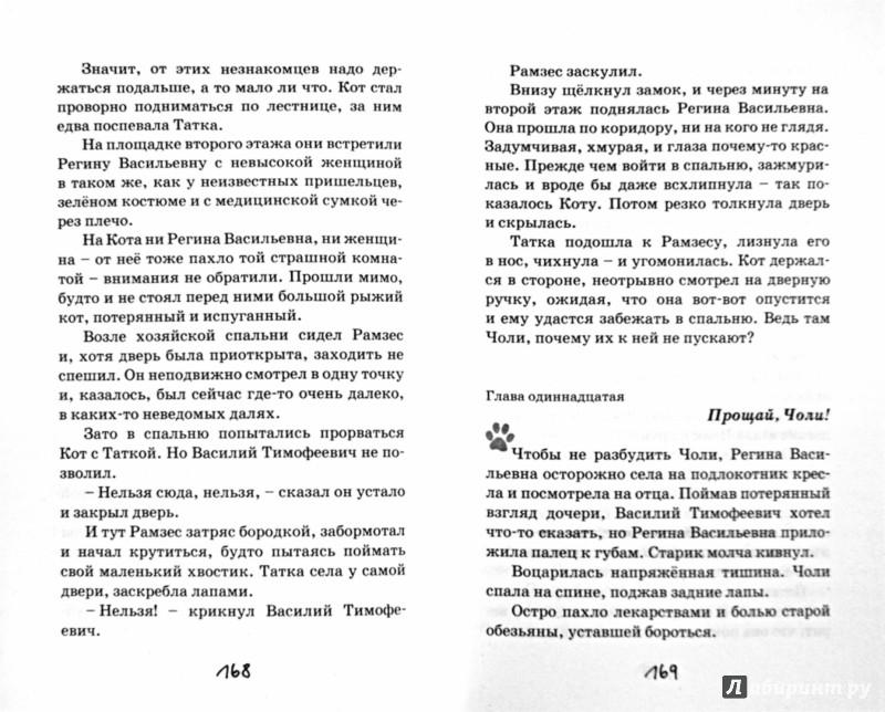 Иллюстрация 1 из 9 для Кот - Юрий Ситников | Лабиринт - книги. Источник: Лабиринт