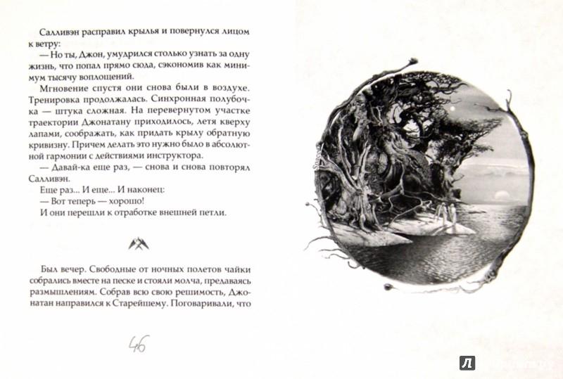 Иллюстрация 1 из 22 для Чайка Джонатан Ливингстон (новая авторская версия) - Ричард Бах   Лабиринт - книги. Источник: Лабиринт