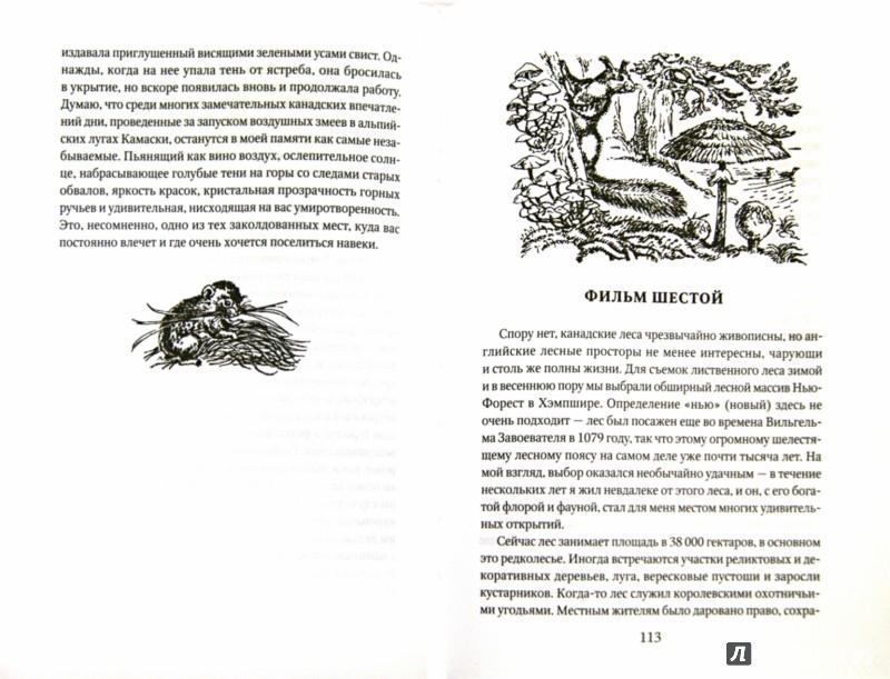 Иллюстрация 1 из 30 для Натуралист на мушке - Джеральд Даррелл | Лабиринт - книги. Источник: Лабиринт
