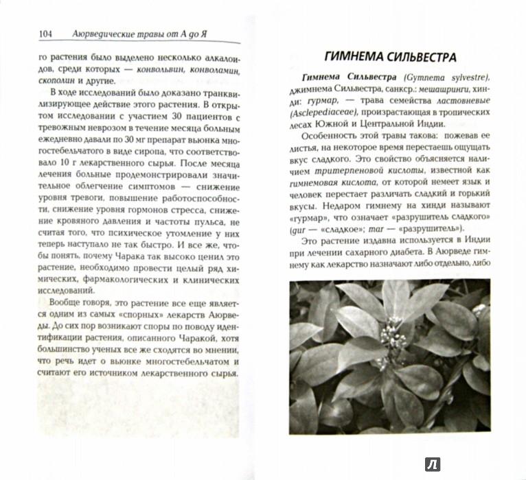 Иллюстрация 1 из 11 для Сакральные растения аюрведы - Амритананда Чопра | Лабиринт - книги. Источник: Лабиринт