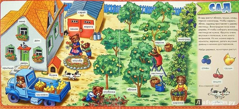 Иллюстрация 1 из 7 для На ферме. Мой первый словарик   Лабиринт - книги. Источник: Лабиринт